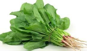 Beberapa Makanan Ini Dijamin Bantu Rambut Semakin Sehat!